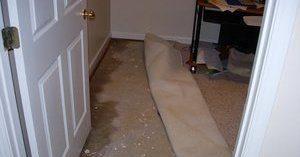 leak repair fire sprinkler malfunction restoration flooded basement
